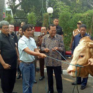 Jaksa Agung HM Prasetyo, Didamping Wakil Jaksa Agung Arminsyah, Memberikan Satu Ekor Sapi Kepada Ketua Forwaka Zamzam Siregar, Di Kejaksaan Agung, Jakarta Selatan, Selasa (21/8).